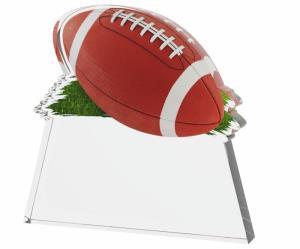 Rugbyová trofej - TAC1M01 - zvìtšit obrázek