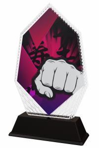 Karate trofej - PYR1M21