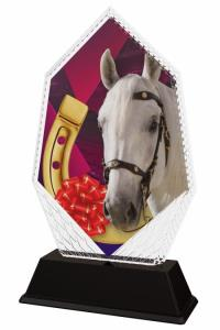 Jezdecká trofej - PYR1M30