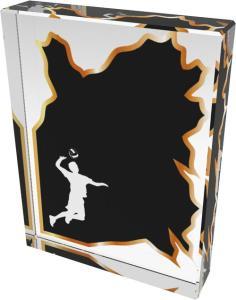 Volejbalová trofej - CR4008M19 - zvìtšit obrázek