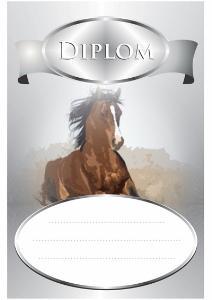 Diplom kùò - DP0008