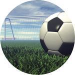 Emblém fotbal - 110