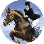 Emblém jezdectví - 108