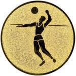 Emblém volejbal - LTK21